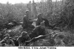 1985 Belize  C Coy NP08-10